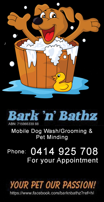 Bark'n'Bathz Mobile Dog Wash Lismore Casino Kyogle, news and events Kyogle, News and Events Casino, News and events Lismore, News and Events Ballina, News and Events Byron Bay, News and Events Grafton, Advertising Kyogle, Advertising Casino, Advertising Lismore, Advertising Byron Bay, Advertising Ballina, Kyogle Classifieds, Lismore Classifieds, Casino Classifieds, Byron Bay Magazine, Magazine Casino, Lismore Weather